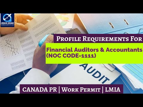 Financial Auditors - Profile Description for Canada Work permit ...