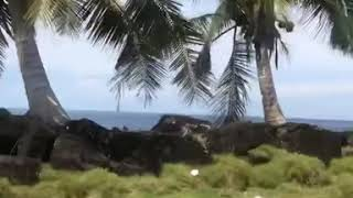 preview picture of video 'Driving by the ocean road in north Savai'i island of Samoa'