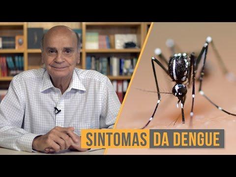 Sintomas da dengue | Coluna #52