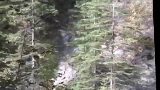 STABALIZED FAKE Footage - Todd Standing's Bigfoot video on Survivorman Bigfoot with Les Stroud