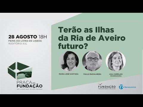 Terão as Ilhas da Ria de Aveiro futuro?