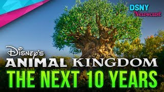 RUMORED Plans for Disney's Animal Kingdom In The Next 10 Years - Disney News - 1/25/18