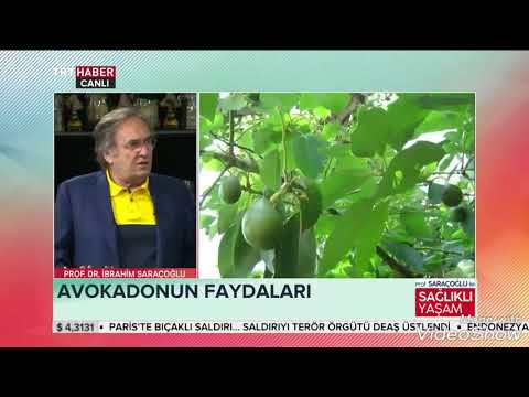 AVOKADONUN MÜTHİŞ FAYDALARI ~ Şifaya vesile Saraçoğlu