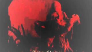 Terminal Choice - Totes Fleisch (MeZire Mix)
