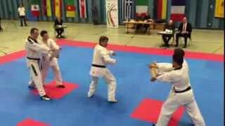 Taekwondo - auf dem Weg zum schwarzen Gürtel