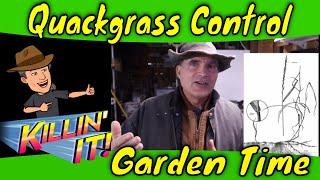 Quackgrass Control Organic weed management
