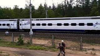 Новый Поезд Аллегро в Комарово