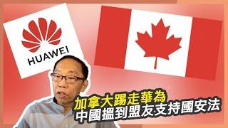 20200604 加拿大踢走華為 中國搵到盟友支持國安法