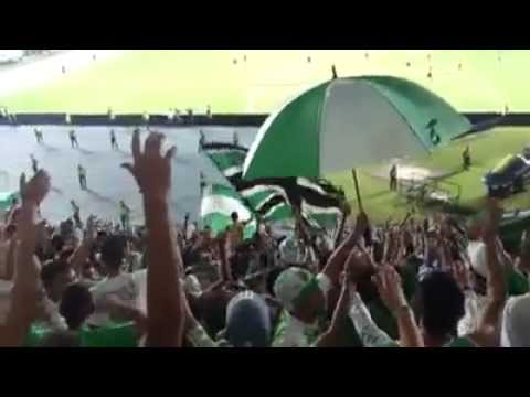 """Frente Radical Verdiblanco | Se Me Ha Perdido Un Corazon | Cali 2 - 0 Santafe"" Barra: Frente Radical Verdiblanco • Club: Deportivo Cali"