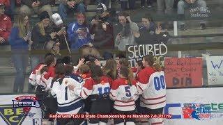 Moose Lake Area Rebels 2019 12U B Girls MN Hockey State Champions