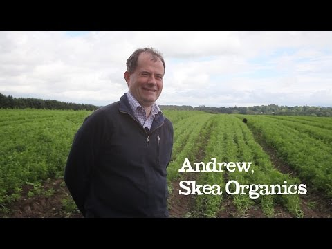 Skea Organics