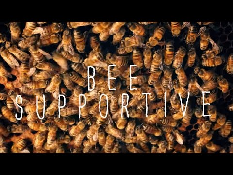 Tanya Phillips-- Bee Supportive