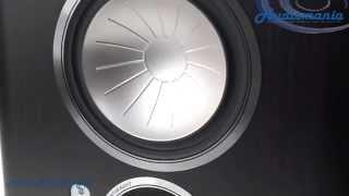 Тыловая акустика Monitor Audio Gold GXFX