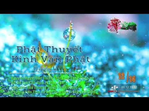 Kinh Vạn Phật 12/14 - Quyển 11