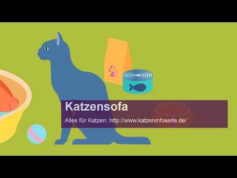 Katzensofa - Das muss es sein