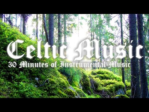 30 Minutes of Irish Celtic Instrumental Music