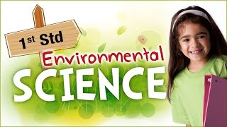 EVS For Class 1 | Learn Science For Kids | Environmental Science | Science For Class 1 - Download this Video in MP3, M4A, WEBM, MP4, 3GP