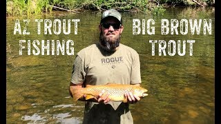 AZ Trout Fishing: Catching Some Big Brown Trout in Arizona