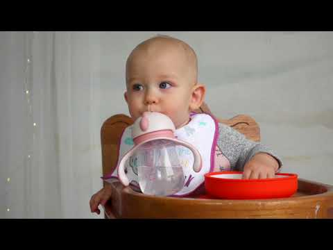 Baboo gertuvė su silikoniniu šiaudeliu, 6+ mėn, 260ml, Butterfly kaina ir informacija | Buteliukai kūdikiams ir jų priedai | pigu.lt