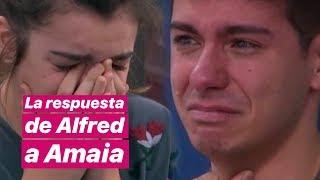 """LA RESPUESTA De Alfred Al RELÁMPAGO De Amaia: """"Te Voy A Esperar"""""""