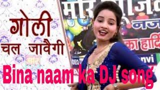 Bina Naam Ka Dj Song Goli Chal Javegi Haryanvi