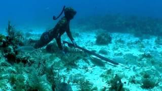 Смотреть онлайн Захватывающая подводная охота с арбалетом