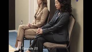 Grey's anatomy S8E20 - Old mythologies - The barr brothers