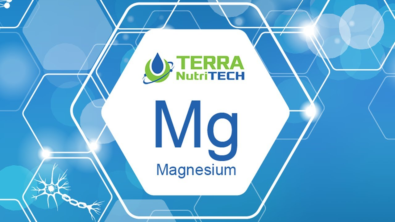 Magnesium is becoming increasingly important when examining Animal Welfare on the Farm