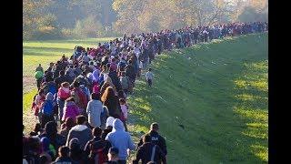 Trump Downsizing Refugee Agencies thumbnail