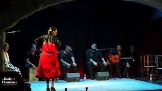 Flamenco Dancer - La Bodega Flamenca