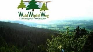 preview picture of video 'Waldwipfelweg, der Wipfel der Gefühle.'