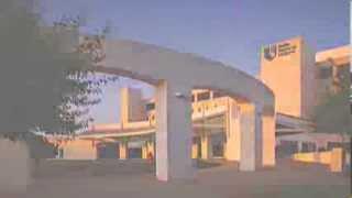 Sinclair & Co. - Video - 2