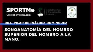 Sonoanatomía del miembro superior del hombro - Dra. Pilar Bernáldez Domínguez | Sportme & SATO