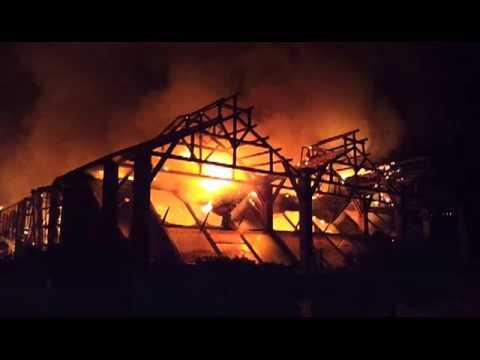 Incendio rogo brucia Città della scienza Napoli