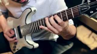ᴴᴰ VITALISM | GRADUS | GUITAR PLAYTHROUGH [OFFICIAL]