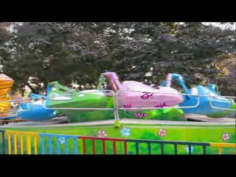 Amusement Rides - New Wave Bob
