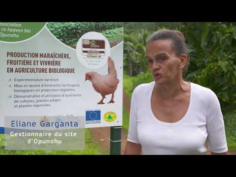 L'Union européenne, à vos côtés – Polynésie française