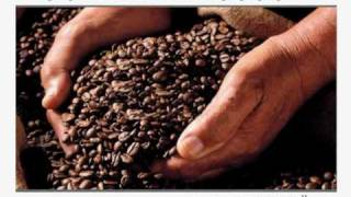 preview picture of video 'Caffè Attibassi - CoIND'