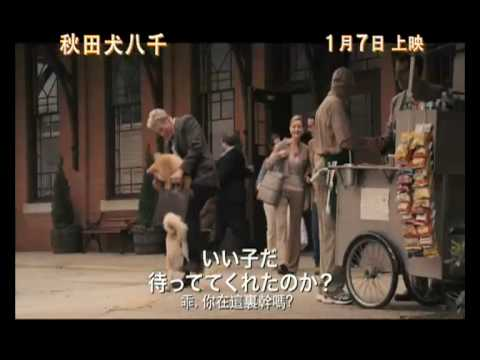 秋田犬八千電影海報