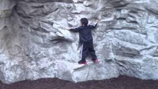 Disney Rock Climbing