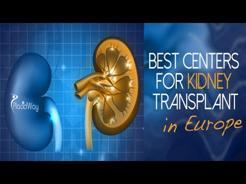 Best Kidney Transplant Surgery in Europe