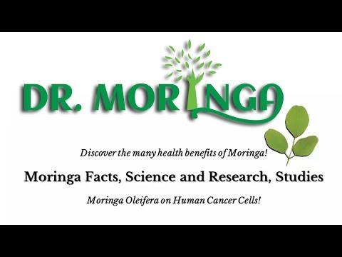 What IS MORINGA?