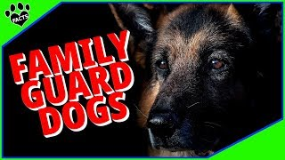 Best Family Guard Dog Breeds - Protecting Yet Loving