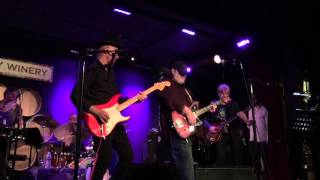 Matthew Sweet - Divine Intervention - City Winery NYC 5-7-2016