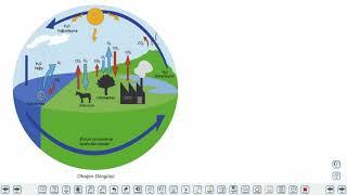 Eğitim Vadisi 11.Sınıf Coğrafya 3.Föy Enerji Akışı ve Madde Döngüsü 2 Konu Anlatım Videoları