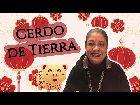 2019 AÑO DEL CERDO DE TIERRA !! ASTROLOGÍA CHINA   Mónica Koppel