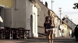 preview picture of video 'Ein guter Boden.Langenlois 2014 – Spot'