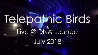 """Telepathic Birds – """"Myth"""" (Beach House Cover) – Live @ DNA Lounge (July 2018)"""