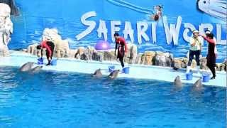 Loma Fish Show@Safari World