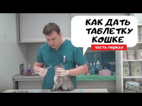 Таблетки от ленточных глистов у человека отзывы